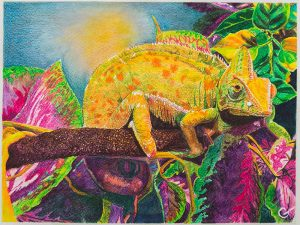 Chameleon by Gail Steel