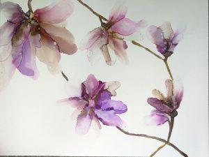 Magnolia Vine by June Corstorphine