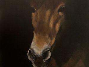 Dark Horse by Wendy Johnson