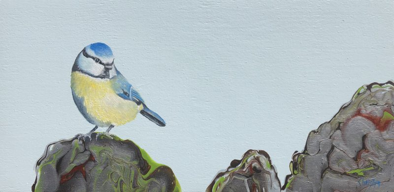 Blue Tit by Christine Bernard