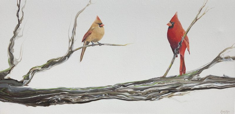 A Cardinals' Life by Christine Bernard