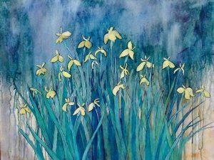 Hayward Irises by Kathy Nay