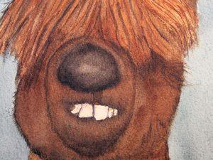 The Alpaca by Jocelyn Bichard