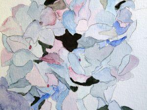 Hydrangea by Jocelyn Bichard