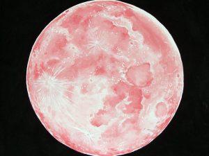 Luna Pink by Sheila Van Delft