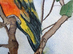 The Parrot by Jocelyn Bichard