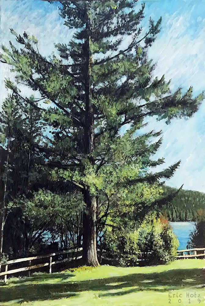 Douglas Fir at Hayward Lake by Eric Hotz