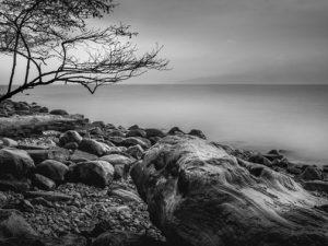 Grey Day at Acadia by Brad Koop