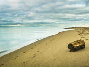 Iona Beach Isolation by Brad Koop